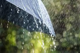 انتشارسروده باران دل از مجموعه شعر پاییز دکتر امانی
