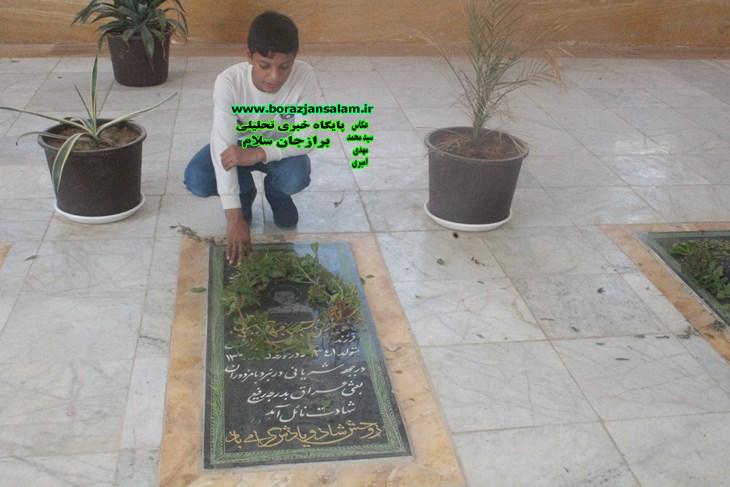بشیر آباد شهرستان دشتستان ۸ شهید و بی بی حکیمه دارد و  روستای سربست شهرستان  دشتستان ۱۵ شهید و یک امام زاده دارد .