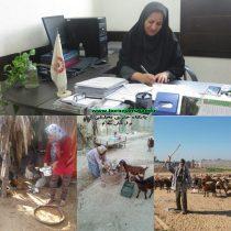 آرزو منوچهری سرپرست مدیریت بهزیستی شهرستان بوشهر:توانبخشی مبتنی بر جامعه طرحی برای توانمندسازی معلولان روستایی