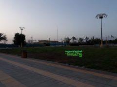 افتتاحیه تلویزیون میدان گنجی پارک آزادی برازجان بعد از پایان کرونا + تصاویر