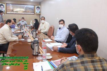 درجلسه امروز شورای شهربرازجان به مناسبت هفته عفاف وحجاب از دوفرزند شهیدو یک خواهر شهید تجلیل بعمل آمد