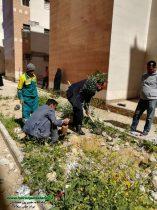 در مجتمع مسکن مهر آبرسانی و پارک خیابان دانشگر  بمناسبت روز درختکاری ٢٧ نهال کاشته شد + تصاویر