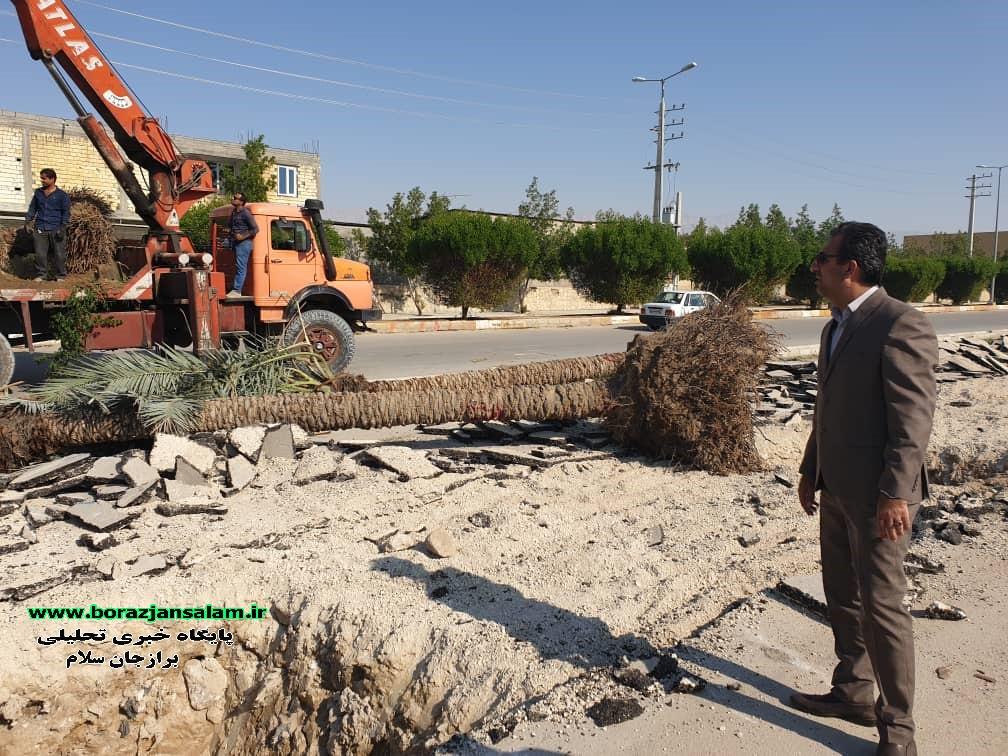 شهردار برازجان خبر داد:تغییر چهرهی مسیر ورودی برازجان از اهرم