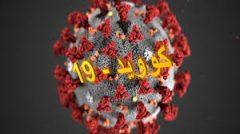 بهبودی قطعی ۵۶۷ مورد مبتلا به کرونا در استان بوشهر و جزئیات۱۲۳ نفر به لیست مبتلایان ویروس کرونا در بوشهر
