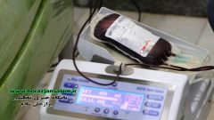 پیشکسوتان جهاد و شهادت استان بوشهر در راستای برگزاری مرحله دوم رزمایش کمک مؤمنانه با حضور در اداره کل انتقال خون این استان، خون خود را به بیماران نیازمند اهدا کردند