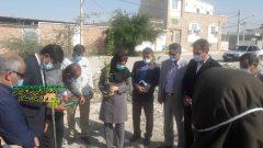 تصاویر کاشت درخت: به مناسبت هوای پاک در جاده سلامت ، روبروی مسجد امام علی برازجان