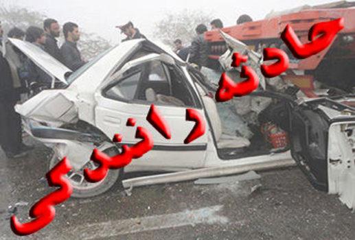 بی احتیاطی صاحب ماشین ۲۰۶ باعث شد که ماشین به زیر پل ورودی برازجان سقوط کند .