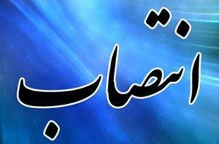 سرپرست سازمان فرهنگی تفریحی بوشهر منصوب شد/ تصویر
