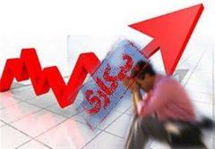نرخ پایین بیکاری در استان بوشهر