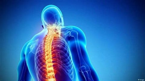 افزایش اختلالات اسکلتی – عضلانی