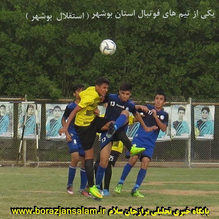 فقط ۸ استان در کشور در لیگ برتر تیم دارند و بوشهر با کمترین جمعیت ۲ لیگ برتری دارد.در فوتبال پایه در همه رده ها در لیگ برتر تیم داریم …..