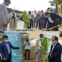 کاشت یک اصله نهال میوه توسط استاندار بوشهر و فرماندار شهرستان دشتستان به مناسبت آغاز هفته منابع طبیعی و روز درختکاری