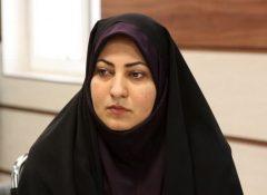عضو شورای اسلامی شهر برازجان:اشیاء باستانی دشتستان بر می گردند .