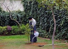 رهبر انقلاب امسال چه درختهایی کاشتند