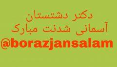 دکتر سروستانی پزشک دشتستانی به جمع شهدای مدافع سلامت استان بوشهر ملحق شد